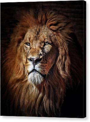 Proud N Powerful Canvas Print by Elaine Malott