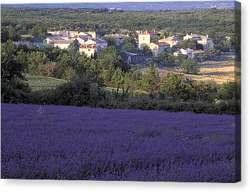 Provence Canvas Print by Christian Heeb