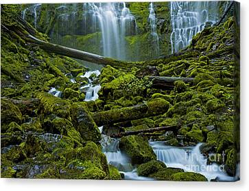 Canvas Print featuring the photograph Proxy Falls by Nick  Boren