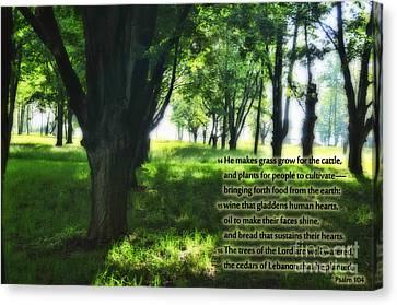 Psalm 104 Canvas Print