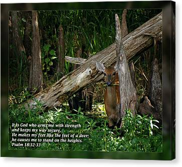 Psalm 18 32-33 Canvas Print by Dawn Currie