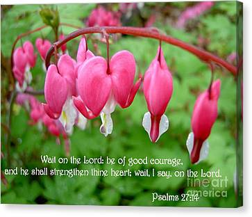 Psalms 27 14 Bleeding Hearts Canvas Print by Sara  Raber