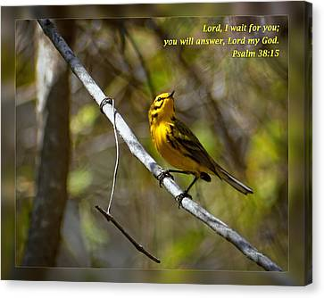 Psalms 38 15 Canvas Print