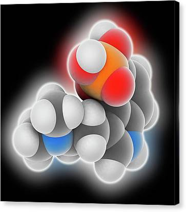 Psilocybine Drug Molecule Canvas Print by Laguna Design