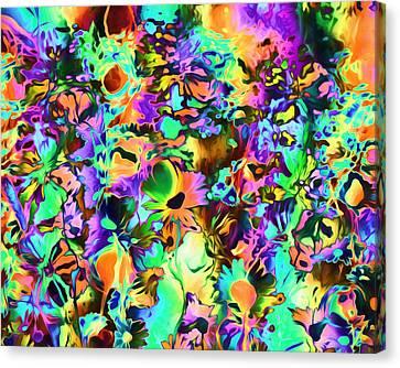 Psychadelic Dreams Canvas Print by Georgiana Romanovna