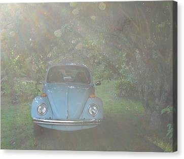 Psychedelic Bug Canvas Print by Diannah Lynch