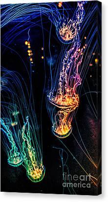 Psychedelic Cnidaria Canvas Print by Olga Hamilton