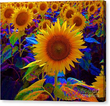 Psychedelic Sunflowers Canvas Print