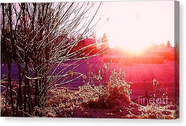 Canvas Print featuring the photograph Psychedelic Winter   by Martin Howard