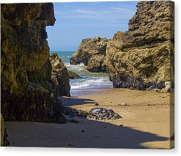 Marin County Canvas Print - Pt Reyes National Seashore by Bill Gallagher
