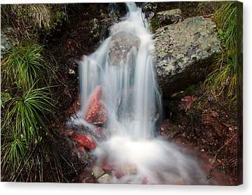 Ptarmigan Trail Waterfall No.2 Canvas Print by Daniel Woodrum