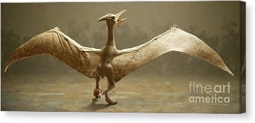 Pterosaur Canvas Print by Danny Smythe