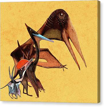 Three Sizes Canvas Print - Pterosaur Size Comparison by Nemo Ramjet