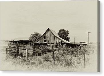 Puckerbrush Rd Barn  Canvas Print by Wilma  Birdwell