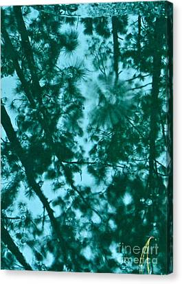 Puddle Of Pines Canvas Print