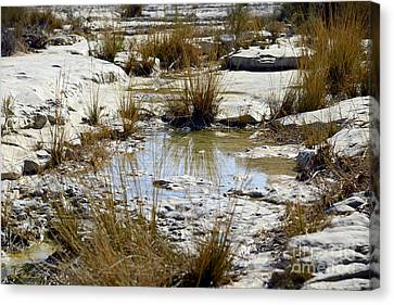 Puddles In The Desert Canvas Print by Arik Baltinester
