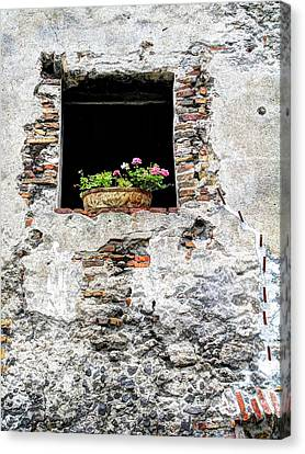 Puebla Window Flowers Canvas Print