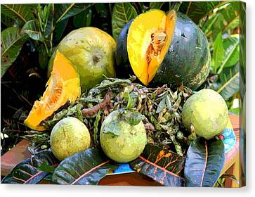 Puerto Rican Harvest Canvas Print by The Art of Alice Terrill