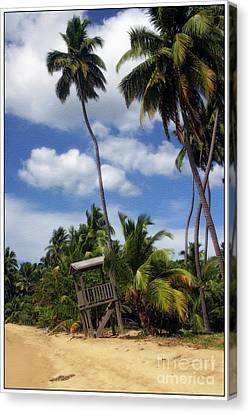 Puerto Rico Palms II Canvas Print by Madeline Ellis