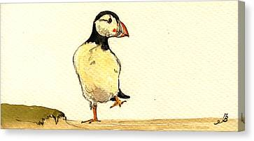 Puffin Bird Canvas Print by Juan  Bosco