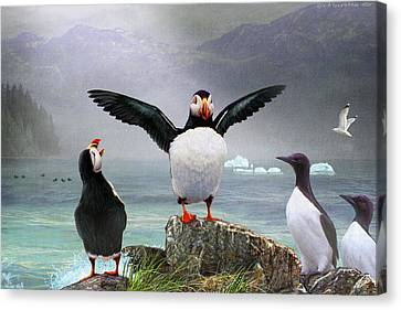 Puffin Pano Canvas Print by R christopher Vest