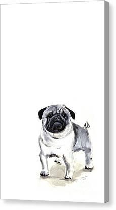Pug 1 Canvas Print by Barbara Marcus