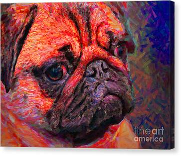 Pug 20130126v2 Canvas Print by Wingsdomain Art and Photography