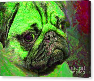 Pug 20130126v4 Canvas Print by Wingsdomain Art and Photography