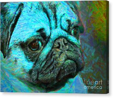 Pug 20130126v5 Canvas Print by Wingsdomain Art and Photography