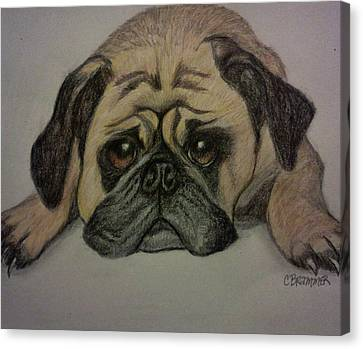 Pug Canvas Print by Christy Saunders Church