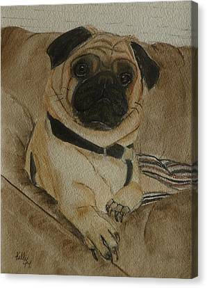 Pug Dog All Ready To Cuddle Canvas Print by Kelly Mills