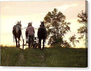 Pulling Home Canvas Print