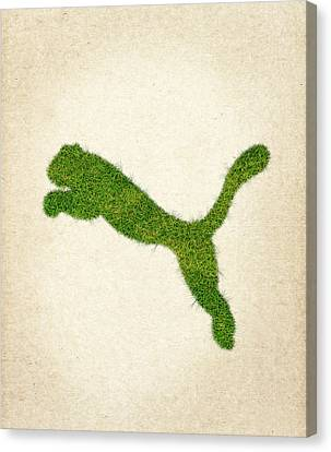 Puma Grass Logo Canvas Print by Aged Pixel