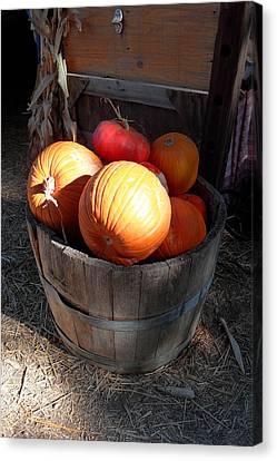 Pumpkin Barrel Canvas Print