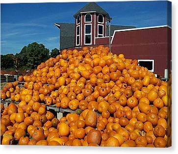 Pumpkin Heaven Canvas Print