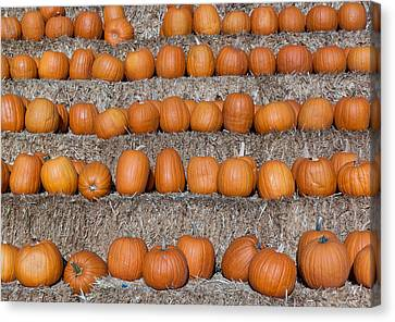 Canvas Print featuring the photograph Pumpkin by Lora Lee Chapman