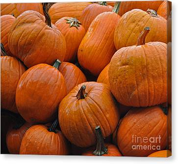 Canvas Print featuring the photograph Pumpkin Pile by Tikvah's Hope
