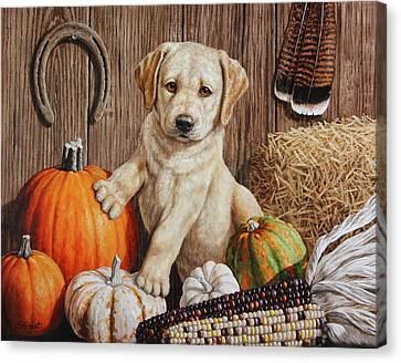 Pumpkin Puppy Canvas Print by Crista Forest