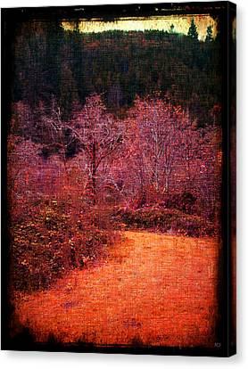 Bare Trees Canvas Print - Pumpkin Spice Winter by Absinthe Art By Michelle LeAnn Scott