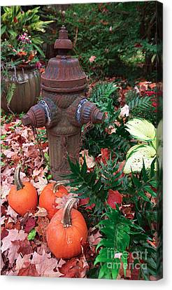Pumpkins By The Hydrant Canvas Print by John Rizzuto