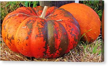 Canvas Print featuring the photograph Pumpkins by Cynthia Guinn
