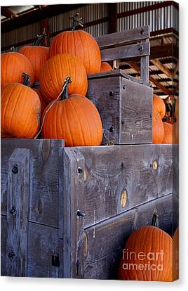 Farm Stand Canvas Print - Pumpkins On The Wagon by Kerri Mortenson