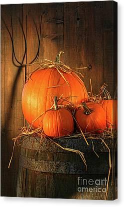 Pumpkins On Wine Barrel  Canvas Print by Sandra Cunningham