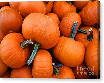 Canvas Print featuring the photograph Pumpkins  by Sarah Mullin