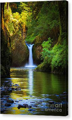 Lush Colors Canvas Print - Punchbowl Falls by Inge Johnsson