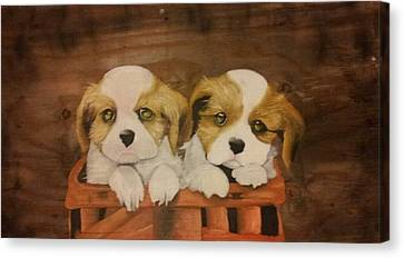 Puppies In A Basket Canvas Print by Terrence Lewis