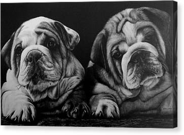 Puppies Canvas Print by Jerry Winick