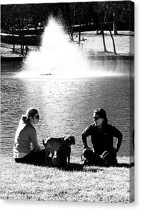 Puppies Play Date At The Park Canvas Print