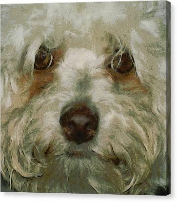 Puppy Eyes Canvas Print by Ernie Echols