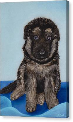 German Shepherd Canvas Print - Puppy - German Shepherd by Anastasiya Malakhova